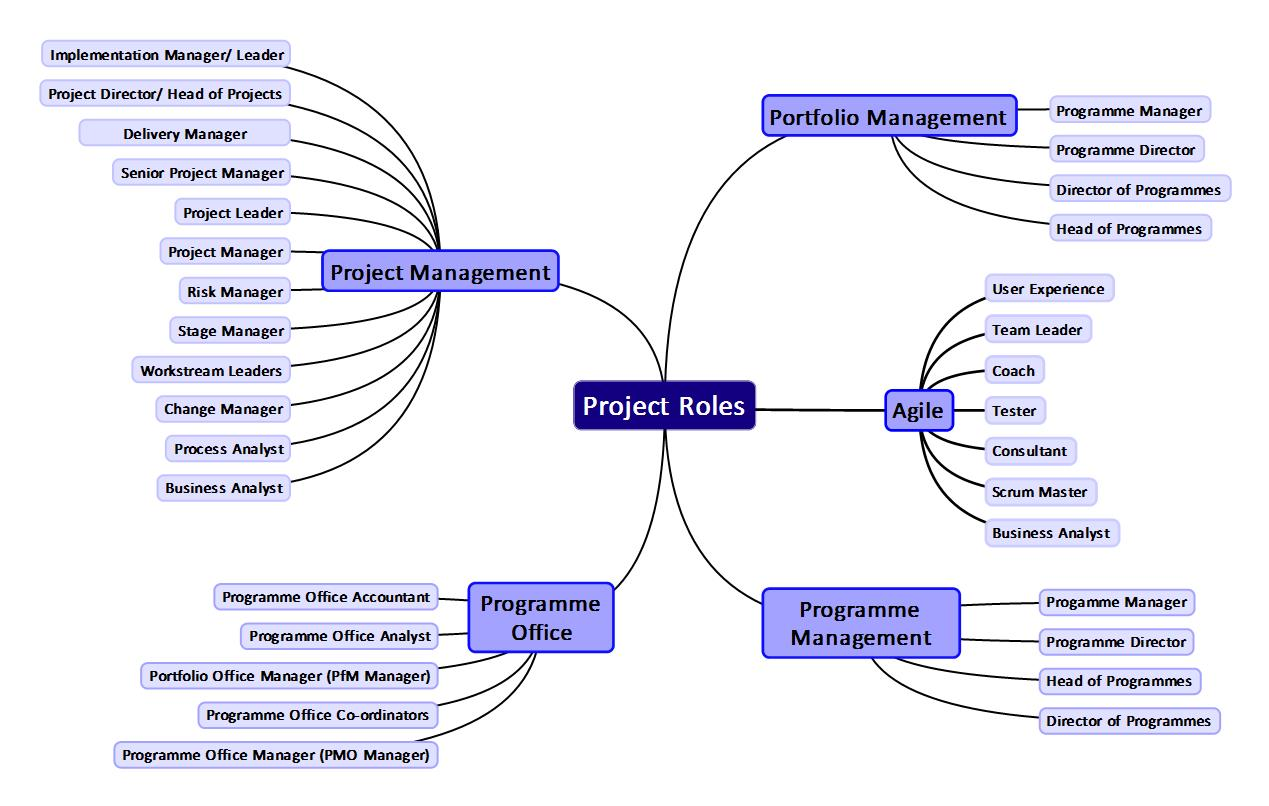 project-roles